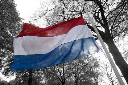 Nederlandse vlag halfstok tegen grijze achtergrond met bomen.